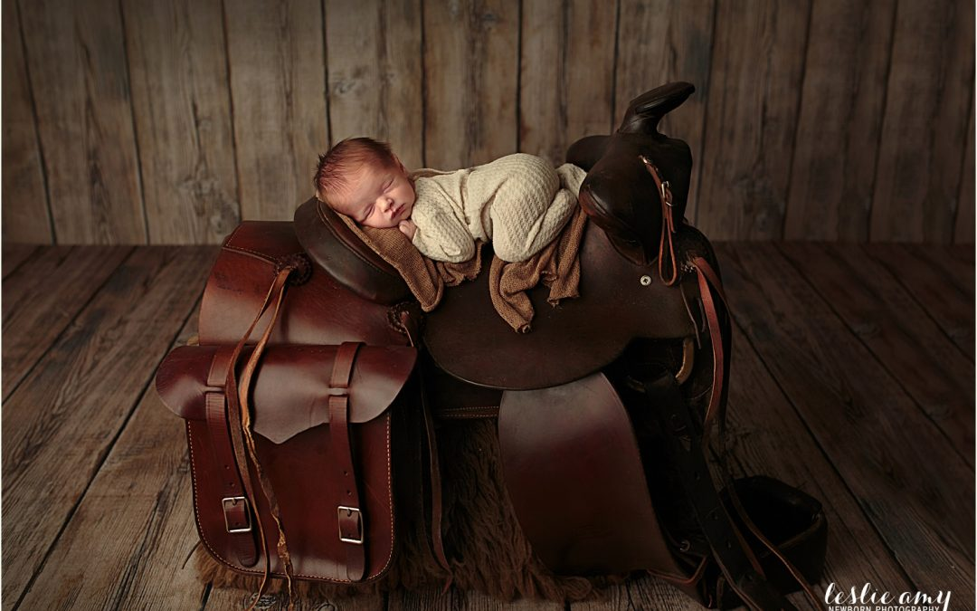 Hartley Douglas | Conway Newborn Photographer