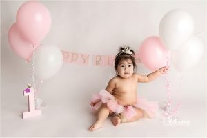 first birthday milestone photography